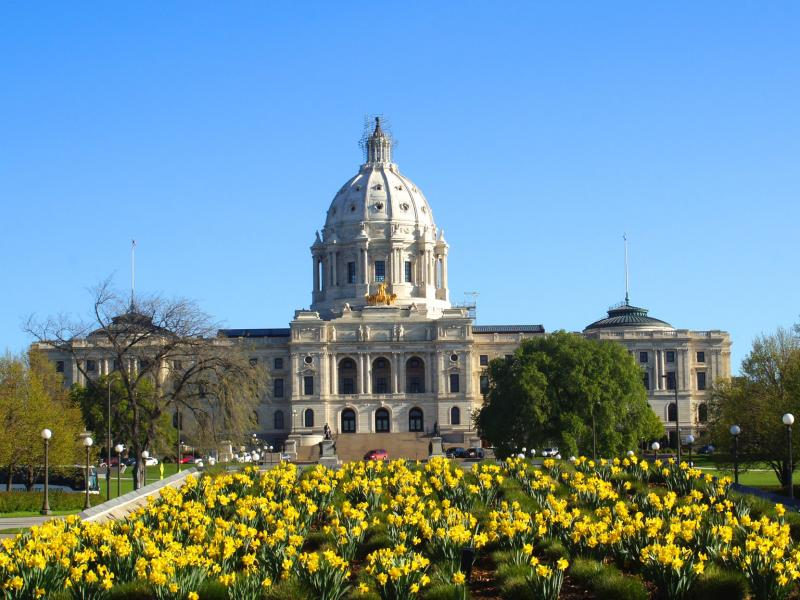 Saint Paul Capitol with daffodils blooming in foreground