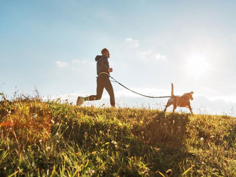 man runs with dog in sunshine