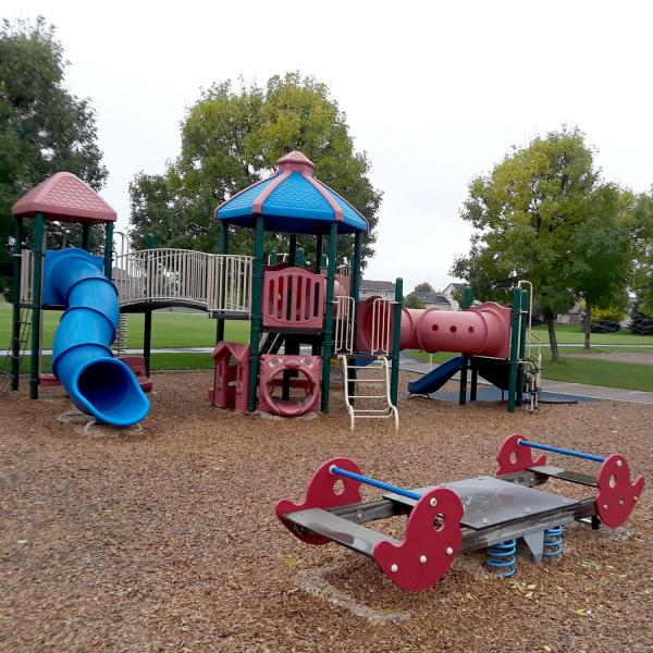 Playground equipment in a park surrounded by trees
